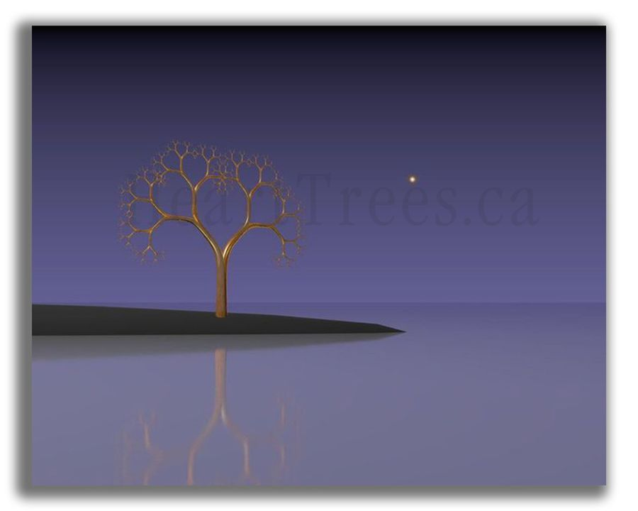 fractal-art-long-point-tree-003